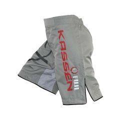 ММА шорты Fuji Kassen gray