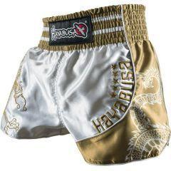 Шорты для тайского бокса Hayabusa Sacred silver - gold