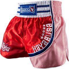 Шорты для тайского бокса Hayabusa Lion Warrior red - blue