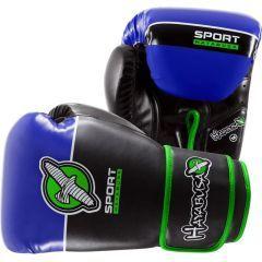 Боксерские перчатки Hayabusa Sport Line 12oz black - blue