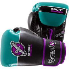 Боксерские перчатки Hayabusa Sport Line 10oz black - green